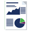 Icon-Audit-Financiar